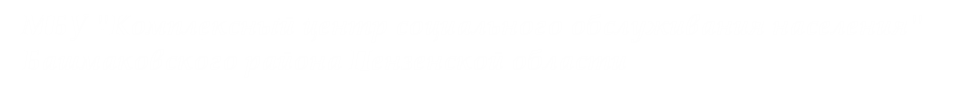 МБУ «Комплексный центр социального обслуживания населения» Башмаковского района